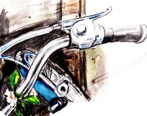 C'era un cortile, di fianco alla casa, e in fondo, appoggiata  con cura al muro perimetrale, quella bicicletta celeste.  Immaginavo una ragazza dolce, timida, ma allo stesso tempo  decisa e risoluta. Mi sentivo felice di quella presenza, tante altre  mattine ero andato a vedere se era lì, come sempre, magari  posizionata in qualche altro modo. Immaginavo la fretta di un  giorno o la maggior cura impiegata in un altro.... (di Bruno Magnolfi - illustrazione di Giulia Tesoro).