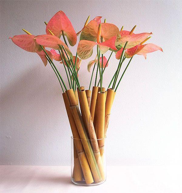 Tubos de bambú e antúrios côr-de-rosa.