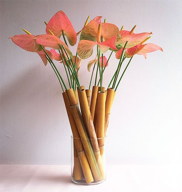 Bamboo Plant Arrangements | Anthurium flowers in bamboo tubes | Bangkok Post: learning