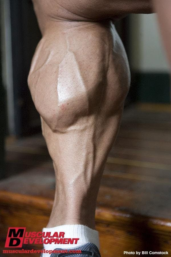 THE BEST CALVES IN HISTORY !!!!
