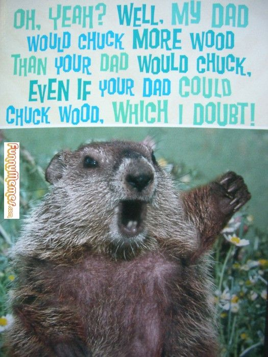 funny memes best fathers day card ever 525x700 photo