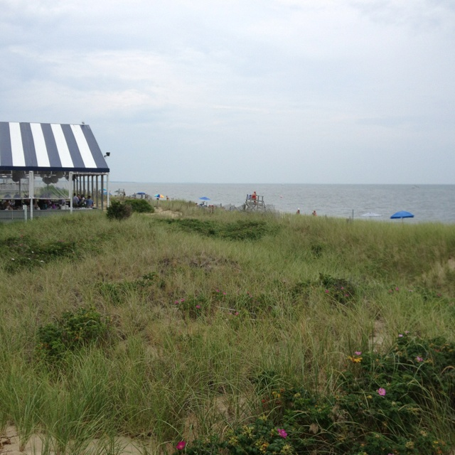 43 Best Beaches On Cape Cod Images On Pinterest