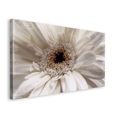 White Flower - obraz na płótnie