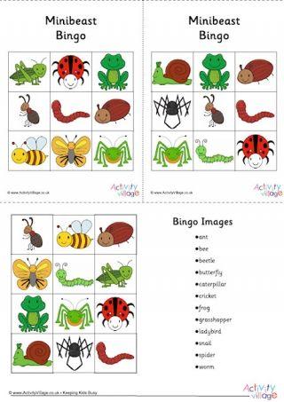 Minibeast Bingo Cards