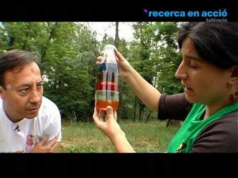 """""""Recerca en acció"""" proposen un experiment amb líquids de diferents densitats barrejats en una ampolla de vidre transparent: - 1r mel - 2n Glicerina  - 3r aigua (amb colorant alimentari per diferenciar-ho de la glicerina). - 4t oli d'oliva - 5é alcohol (amb colorant alimentari també).  Per últim proposen ampliar l'experiment ficant objectes amb diferent pes i observant a quina de les capes s'adhereix."""