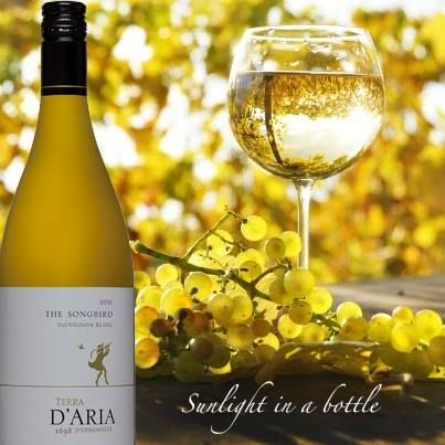 Songbird: A complex Sauvignon blanc, combining aromas and flavours of green pepper, asparagus and gooseberries with tropical fruit and hints of grapefruit on the finish. http://www.dariawinery.co.za
