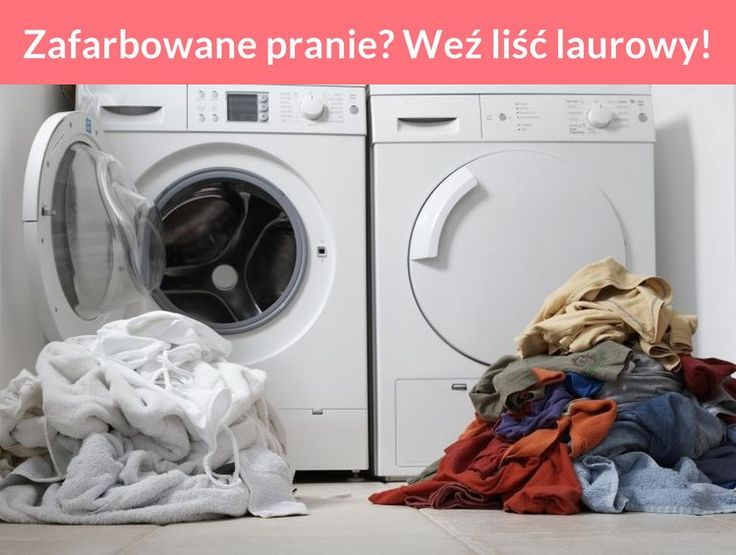 Zafarbowane pranie? Weź liść laurowy!