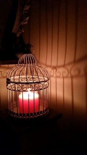 bird cage yankee candle