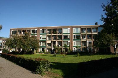 """Op de begane grond gelegen fijn 3-kamer appartement met een (overdekt) balkon en een aangename en zonnige voortuin met """"groen"""" uitzicht. Het appartement beschikt over een berging en is zeer centraal gelegen op korte afstand van o.a. het stadscentrum, openbaar vervoer, uitvalswegen, diverse uitgebreide winkel voorzieningen en de uiterwaarden.    I"""