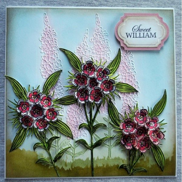 Sheena Douglass Perfect Partners Victorian Floral Sweet William Die