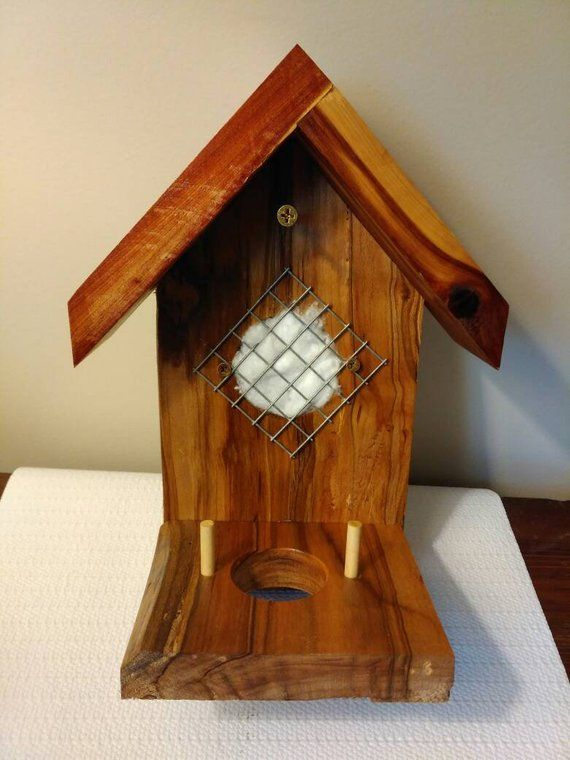 Check Out This Item In My Etsy Shop Https Www Etsy Com Listing 683769795 Hummingbird Houseshummingbird Hummingbird House Bird House Bird House Plans