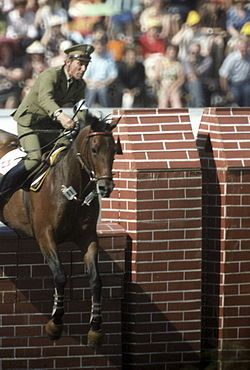 Jan Kowalczyk & Artemorze participated at the 1980 Summer Olympics in Moscow, where he won a gold medal in Individual Jumping.[
