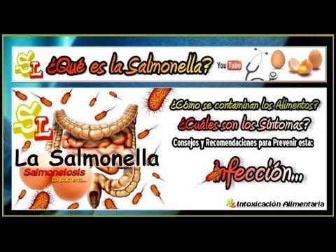 Infecciones por Salmonella, Contagios por Salmonelosis, Causas y Síntomas, Salmonelosis Huevo