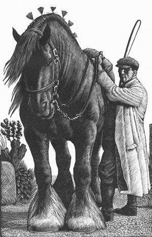 agrarianrhythm:    Charles Frederick Tunnicliffe,Stallion and Groom