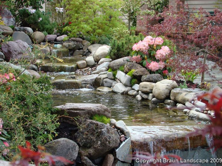17 best ideas about pond landscaping on pinterest pond for Coy pond waterfall