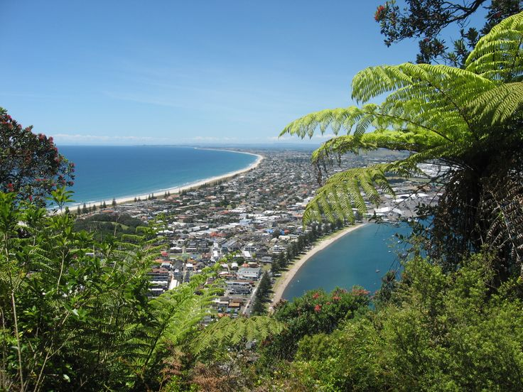 New Zealand. From the top of the Mt Maunganui Tauranga (Bay of Plenty) - top picture...almost like finest post card :)