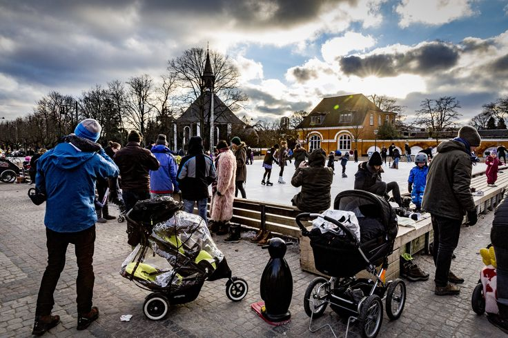 Frederiksberg skating rink,  Ice princesses and princes in perfect harmony and at all levels. A biting cold and strong winds across the rink!
