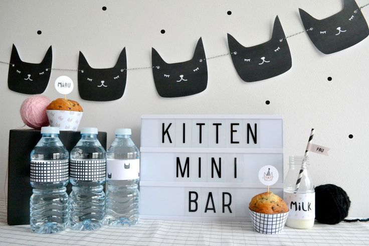 Littel Kitten,una fiesta gatuna en All Lovely Party