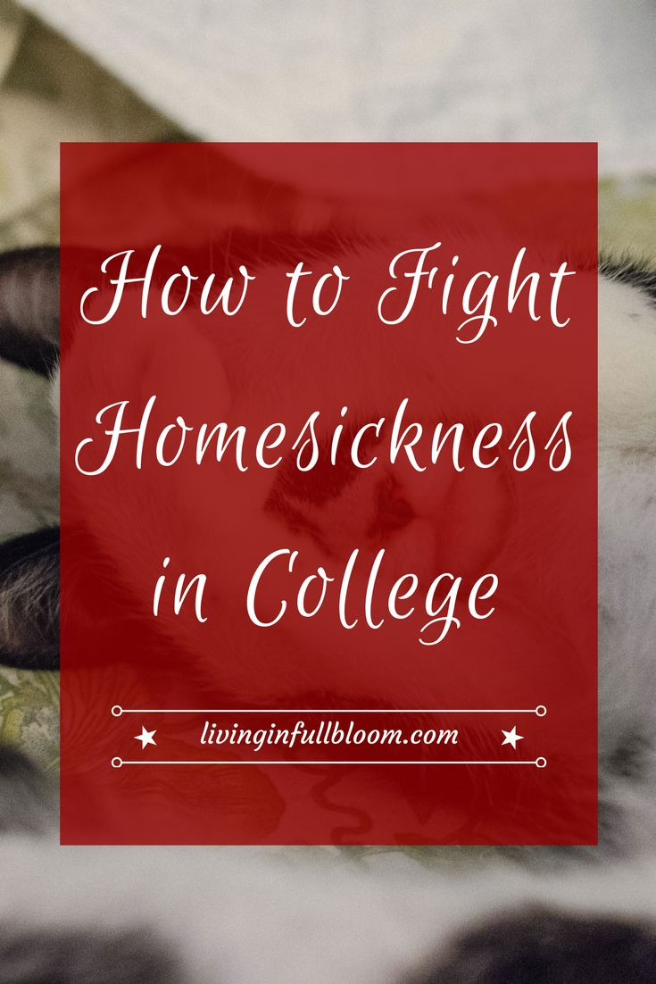 Homesickness affects almost every college student. Here are my tips for battling homesickness when you're stuck at college and can't make it home!