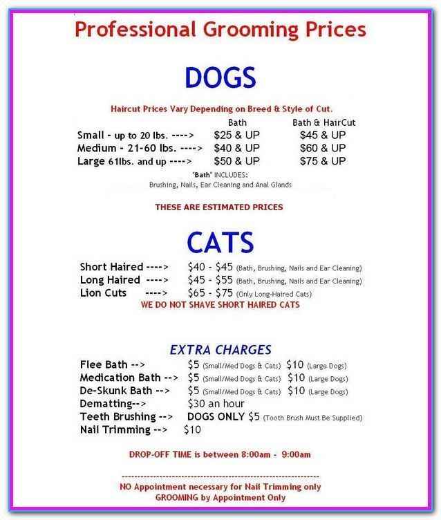 Dog Grooming Price List Near Me Pet Grooming Price List I Cannot Quote An Ex There Are Many Reasons Wh Dog Grooming Shop Dog Grooming Pet Grooming Salon