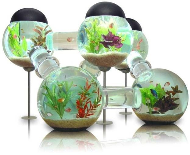 multiroom fish tank