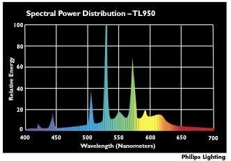 White Light Spectral Power Distribution