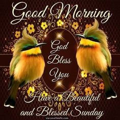 Good Morning God Bless Have A Beautiful Sunday