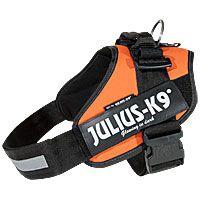 Julius K-9 IDC Harness Mini Safety Orange AUBIE
