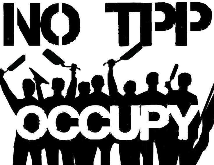 Like ACTA, the TPP is being negotiated rapidly with little transparency. TPP raises significant concerns about citizens' freedom of expression, due process, innovation, the future of the Internet's global infrastructure, and the right of sovereign nations to develop policies and laws that best meet their domestic priorities. In sum, the TPP puts at risk some of the most fundamental rights that enable access to knowledge for the world's citizens.