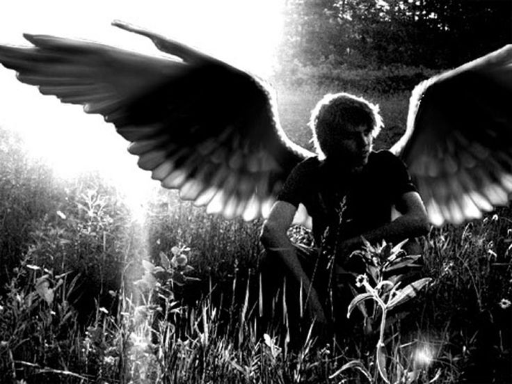angels.... fallen angels... wondering