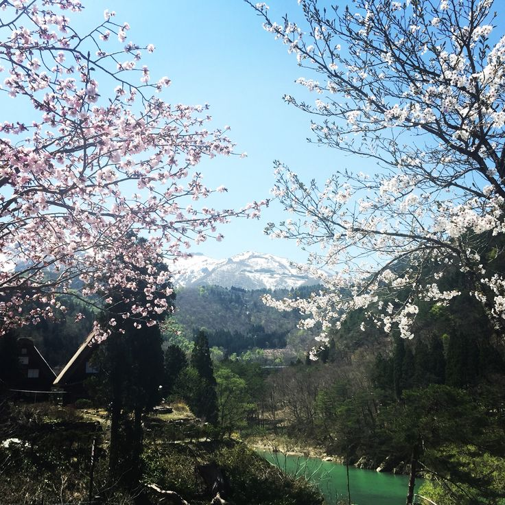 Shiragawa Ono-Gun Ogimachi, spring in Japan