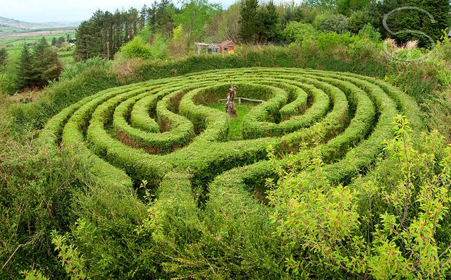 Labyrinth Maze:  A garden labyrinth. But, a labyrinth is not a maze! Mazes are for getting lost, labyrinths are for finding yourself!