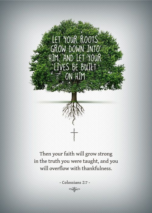 Let your root grow down into Him... and you will overflow with thankfulness.