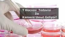 T Hücresi Tedavisi İle Kansere Umut Geliyor!