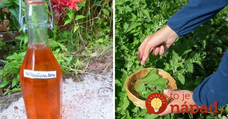Zázračný sirup z medovky: Dajte si ho pred spaním do čaju a v noci sa nebudete budiť!