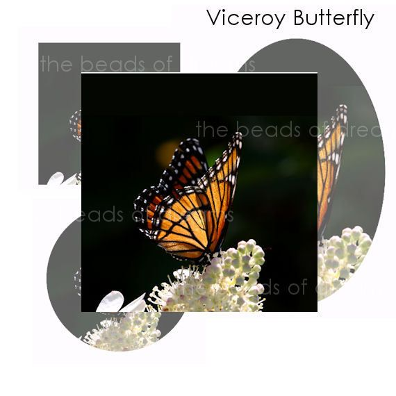 Beads and Jewelry supplies - The Beads of Dreams - Viceroy butterfly ...