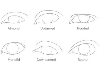 How to Draw Different Eye Shapes | RapidFireArt This gal is amazing