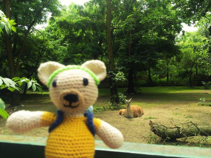 Maurycy w Zoo