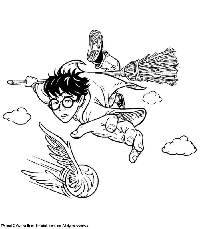 67 best coloriages Harry Potter images on Pinterest | Coloring books ...