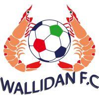 1969, Wallidan FC (Bakau, Gambia) #WallidanFC #Bakau #Gambia (L14327)