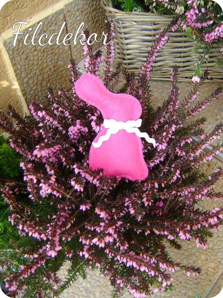 pink bunny/ pink nyuszi