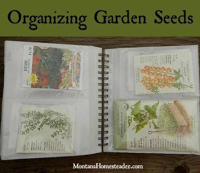 Organizing Garden Seeds. An easy way to sort, organize and store garden, herb and flower seeds | Montana Homesteader