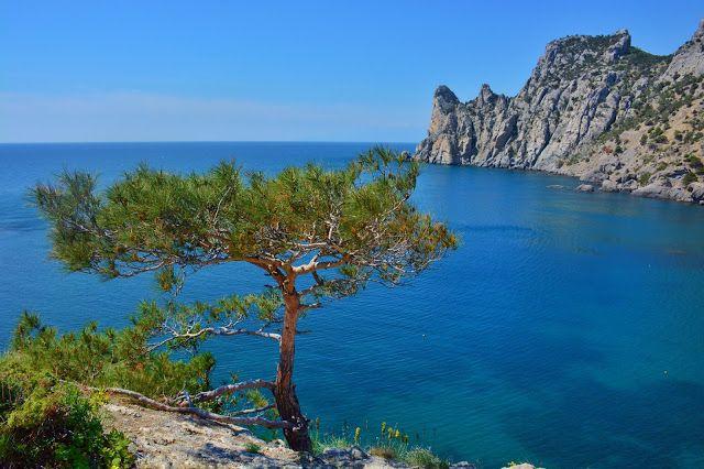 Ninelly: По Крыму на кабриолете