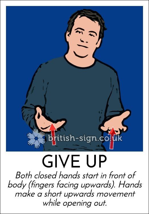 Learning American Sign Language - Signing Savvy