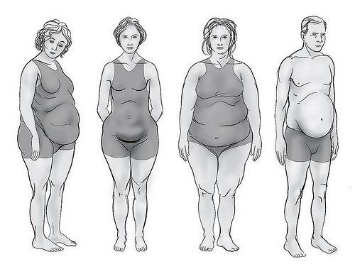 15 Best Ideas About Body Type Quiz On Pinterest Quick