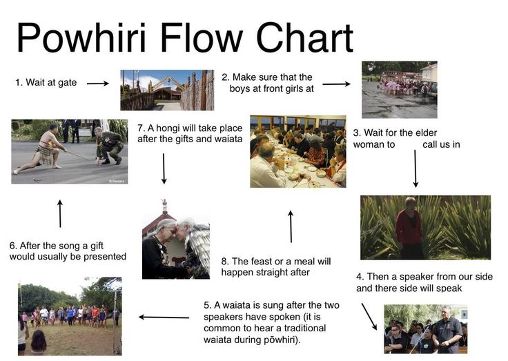 Powhiri_Flow_Chart.jpg (958×681)