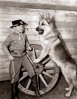 RinTinTin (September 1918 – August 10, 1932) was a male German Shepherd dog rescued from a World War I battlefield