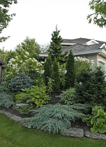 Beautiful landscaping by incorporating various evergreens.