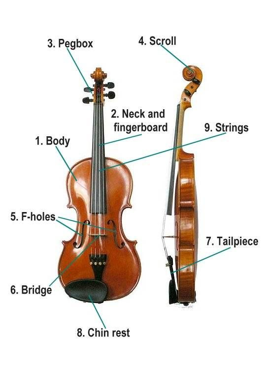 The 77 Strings Orchestra Waltz Favorites