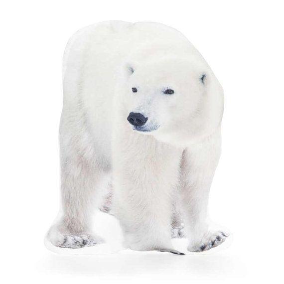Polar Bear Polar Bear Cushion Polar Bear Pillow Winter